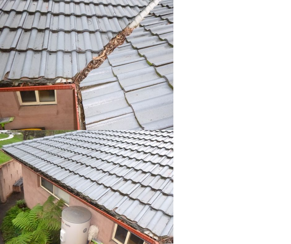 Blocked Guttering- One of the most Common Pre-Purchase Defects
